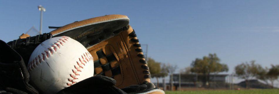 Mizuno GPM1403 Premier 14-Inch Adult Softball Glove
