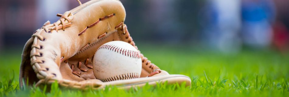 Softball Glove Brands by the Budget